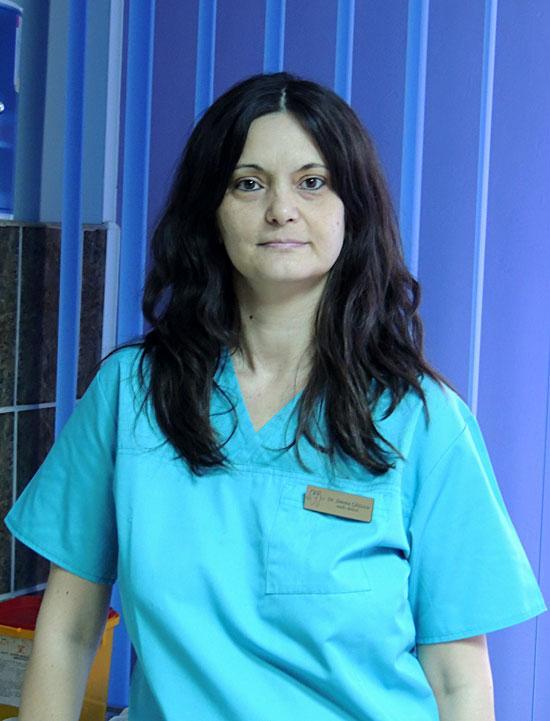 Medic specialist stomatolog